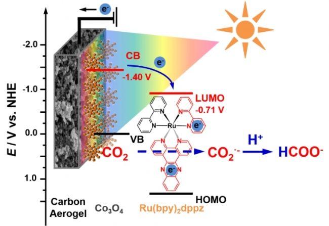 同济教授高效仿生光电催化选择性还原CO2研究取得重要进展